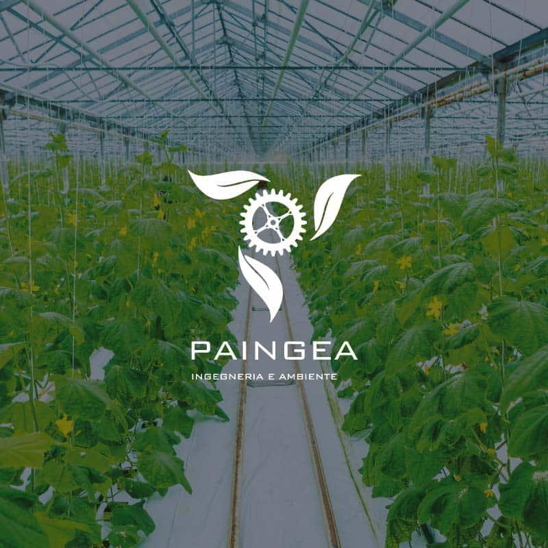 08-ilgruppo_paingea